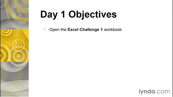 Welcome: The 5-Day Excel Challenge