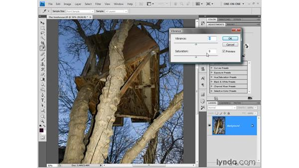 Boosting colors with Vibrance: Photoshop CS4 One-on-One: Fundamentals