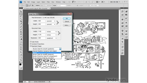Selecting an interpolation option: Photoshop CS4 One-on-One: Fundamentals
