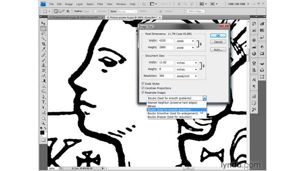 Downsampling your artwork: Photoshop CS4 One-on-One: Fundamentals