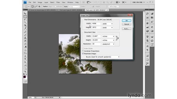 The mythology of upsampling: Photoshop CS4 One-on-One: Fundamentals