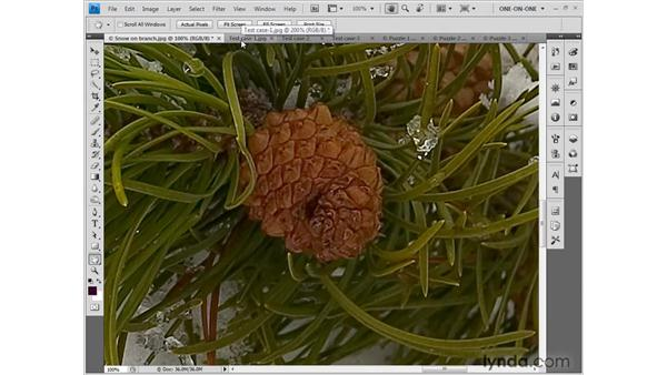 Better ways to make an image big: Photoshop CS4 One-on-One: Fundamentals