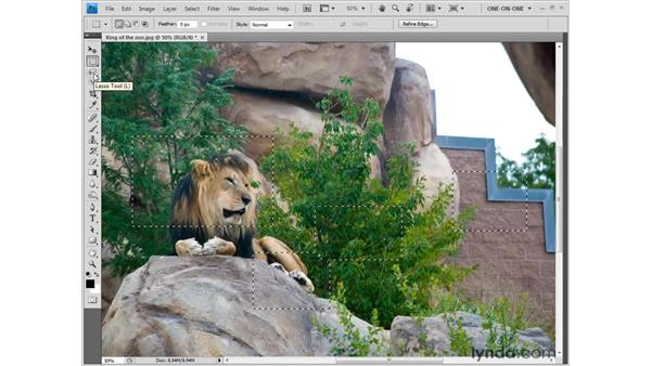 The Crop command: Photoshop CS4 One-on-One: Fundamentals