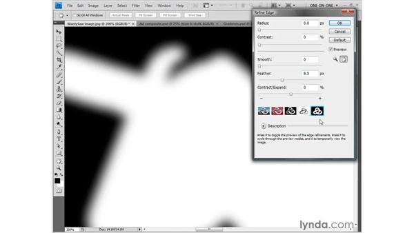 Using the Refine Edge command: Photoshop CS4 One-on-One: Fundamentals