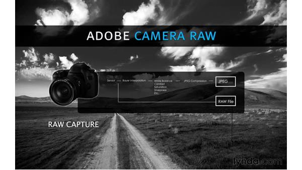 What is Camera Raw?: Photoshop CC for Photographers: Camera Raw 9 Fundamentals