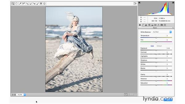 Using Camera Raw as a filter in Photoshop: Photoshop CC for Photographers: Camera Raw 9 Fundamentals