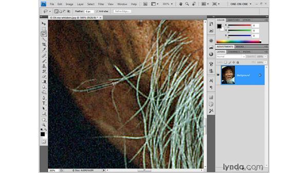 Rebuilding fine details: Photoshop CS4 One-on-One: Fundamentals