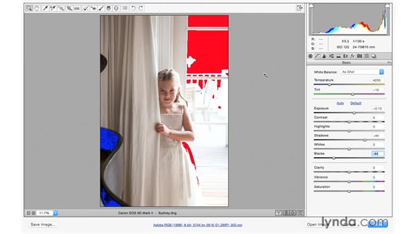 Recovering highlight and shadow detail: Photoshop CC for Photographers: Camera Raw 9 Fundamentals