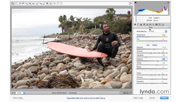 Previewing your progress with before and after views: Photoshop CC for Photographers: Camera Raw 9 Fundamentals
