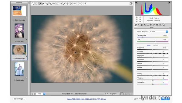 Correcting color balance: Photoshop CC for Photographers: Camera Raw 9 Fundamentals