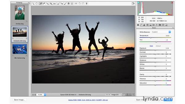 Using the White Balance tool and controls: Photoshop CC for Photographers: Camera Raw 9 Fundamentals
