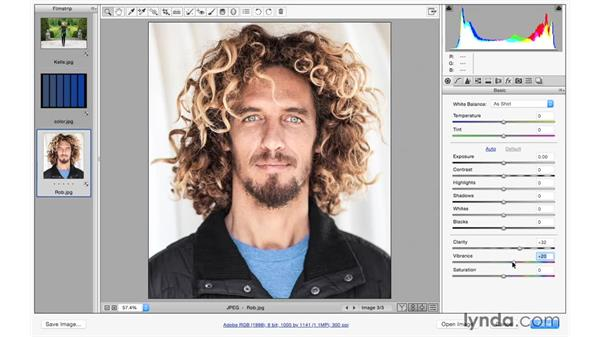 Using Vibrance and Saturation: Photoshop CC for Photographers: Camera Raw 9 Fundamentals
