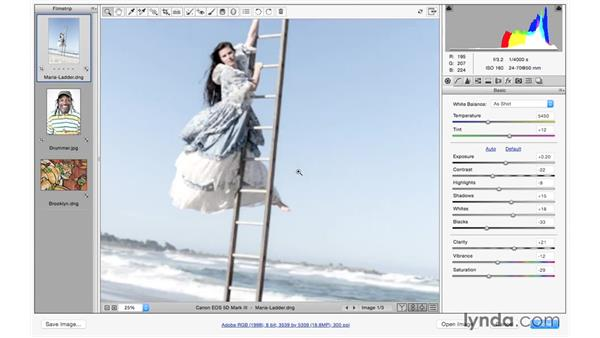 Creating different looks with the Basic panel: Photoshop CC for Photographers: Camera Raw 9 Fundamentals