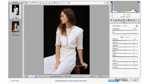 Opening multiple photographs from Photoshop: Photoshop CC for Photographers: Camera Raw 9 Fundamentals