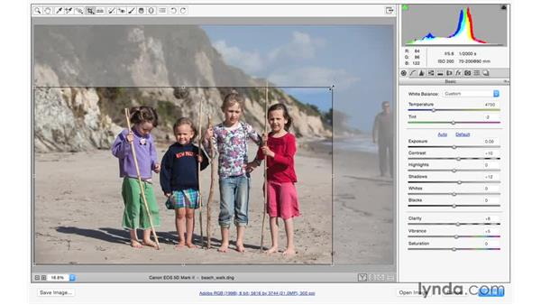 Using the Crop tool: Photoshop CC for Photographers: Camera Raw 9 Fundamentals