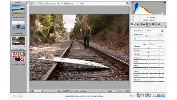 Leveling or straightening an image: Photoshop CC for Photographers: Camera Raw 9 Fundamentals