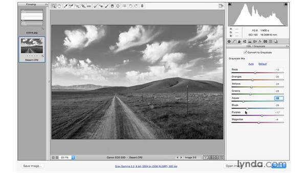 Creating a dramatic black-and-white landscape: Photoshop CC for Photographers: Camera Raw 9 Fundamentals
