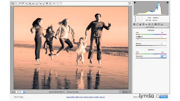 Adding a color-toned effect: Photoshop CC for Photographers: Camera Raw 9 Fundamentals