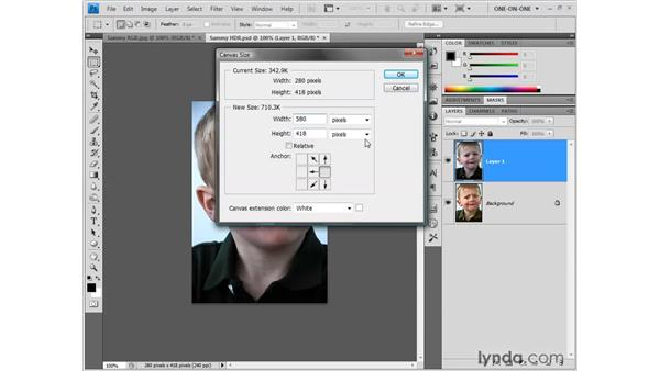 "Creating a comparative ""2-up"" figure: Photoshop CS4 One-on-One: Fundamentals"
