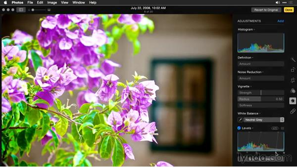 Reading the histogram: Enhancing Images with Photos for OS X