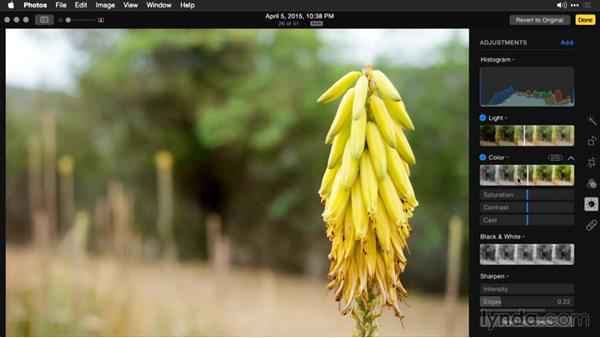 Adjusting saturation of an image: Enhancing Images with Photos for OS X