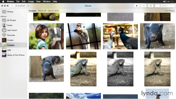 Increasing color contrast in an image: Enhancing Images with Photos for OS X