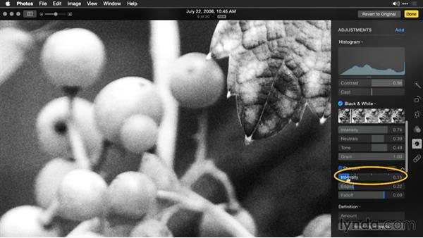 Finalizing the black-and-white image with definition and sharpening: Enhancing Images with Photos for OS X
