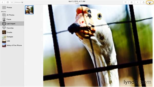 Filtering an image with multiple passes: Enhancing Images with Photos for OS X