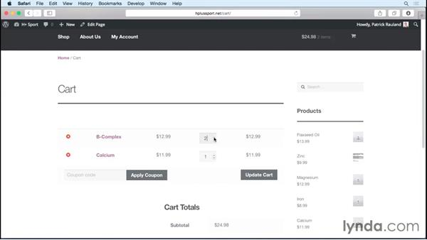 Checking out with PayPal: WordPress Ecommerce