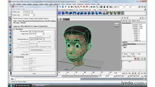 Subdivision surface workflow using mental ray: Maya 2009 Essential Training