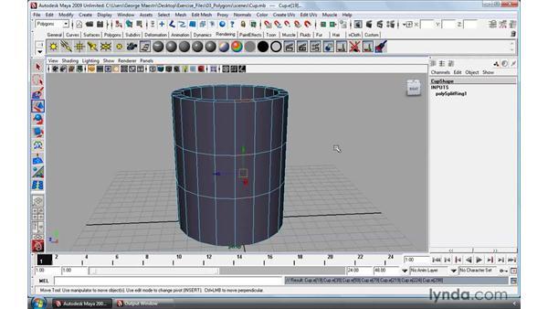Working with edge loops: Maya 2009 Essential Training