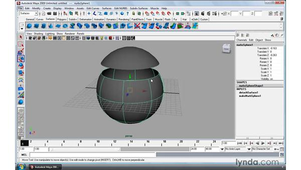 Editing and refining NURBS surfaces: Maya 2009 Essential Training