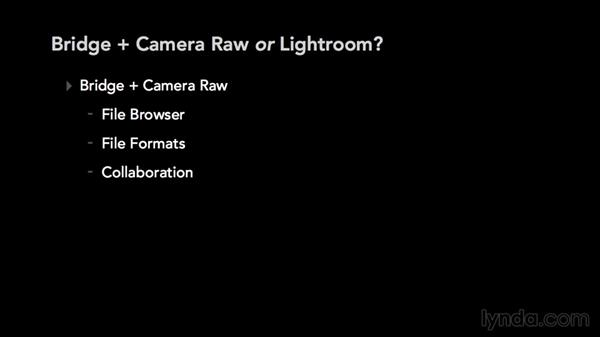 Bridge and Camera Raw or Lightroom: Which should you use?: Adobe Camera Raw Essential Training