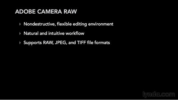 The advantages of Camera Raw: Adobe Camera Raw Essential Training