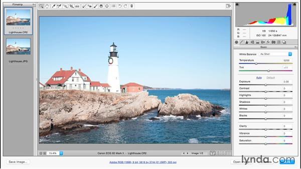 Comparing raw and JPEG files: Adobe Camera Raw Essential Training