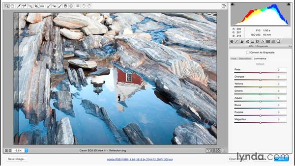 Previewing before-and-after adjustments: Adobe Camera Raw Essential Training