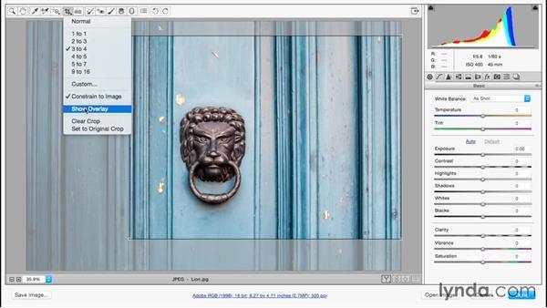Using the nondestructive Crop tool: Adobe Camera Raw Essential Training