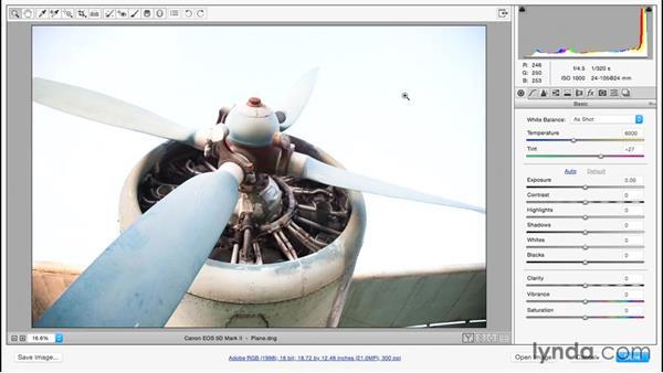 Recovering hidden highlight detail: Adobe Camera Raw Essential Training