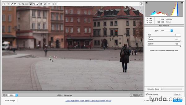 Removing dust and small imperfections with the Spot Removal tool: Adobe Camera Raw Essential Training