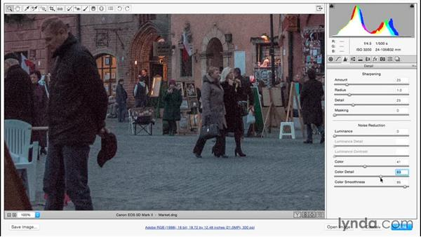 Reducing distracting noise: Adobe Camera Raw Essential Training
