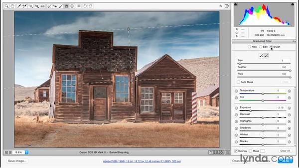 Enhancing an image using the Graduated Filter: Adobe Camera Raw Essential Training