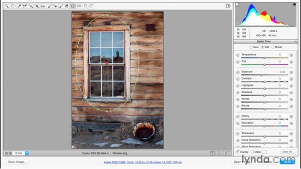 Highlighting important elements using the radial gradient: Adobe Camera Raw Essential Training