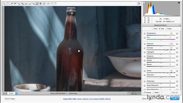Making selective enhancements using the Adjustment Brush: Adobe Camera Raw Essential Training