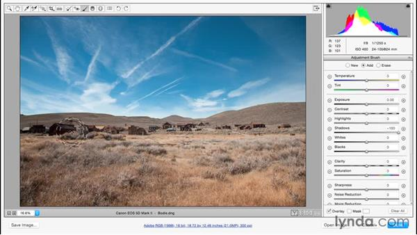 Saving presets for the local adjustment tools: Adobe Camera Raw Essential Training