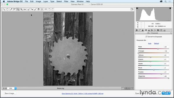 Converting images to black and white: Adobe Camera Raw Essential Training