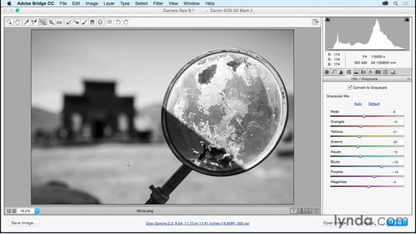 Using Snapshots to explore different adjustments: Adobe Camera Raw Essential Training