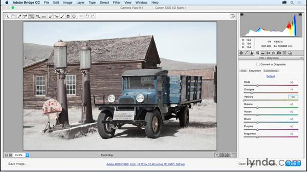 Customizing color using HSL: Adobe Camera Raw Essential Training
