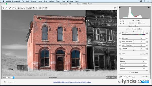 Creating a hand-colored look using the Adjustment Brush: Adobe Camera Raw Essential Training