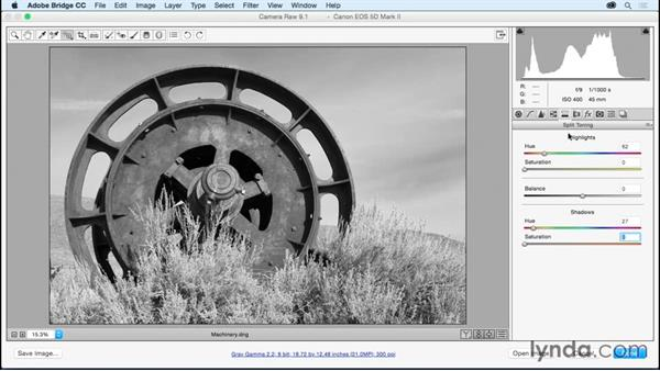 Simulating cross-process and split tone effects: Adobe Camera Raw Essential Training