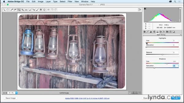 Adding a vintage look to an image: Adobe Camera Raw Essential Training